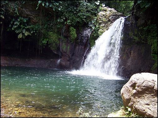 [Guadeloupe] Notre voyage de Noces 100_8215