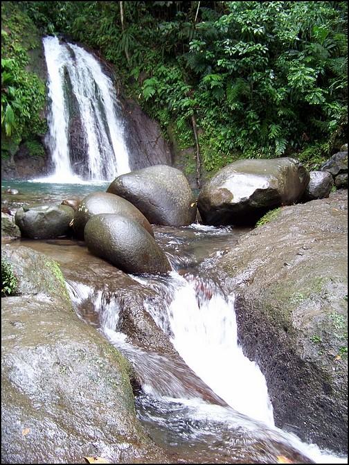 [Guadeloupe] Notre voyage de Noces 100_8519