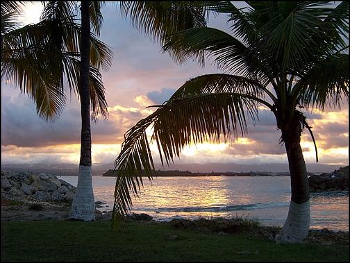 [Guadeloupe] Notre voyage de Noces 100_8520