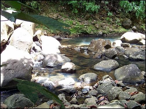 [Guadeloupe] Notre voyage de Noces 100_8721
