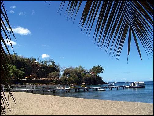 [Guadeloupe] Notre voyage de Noces 100_8810