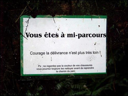 [Guadeloupe] Notre voyage de Noces 24_pan10