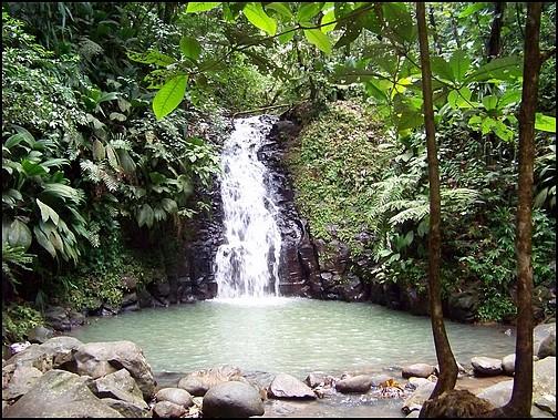 [Guadeloupe] Notre voyage de Noces 25_cas11