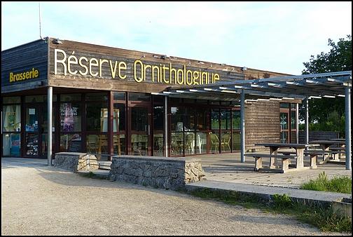 Réserve Ornithologique du Teich 910