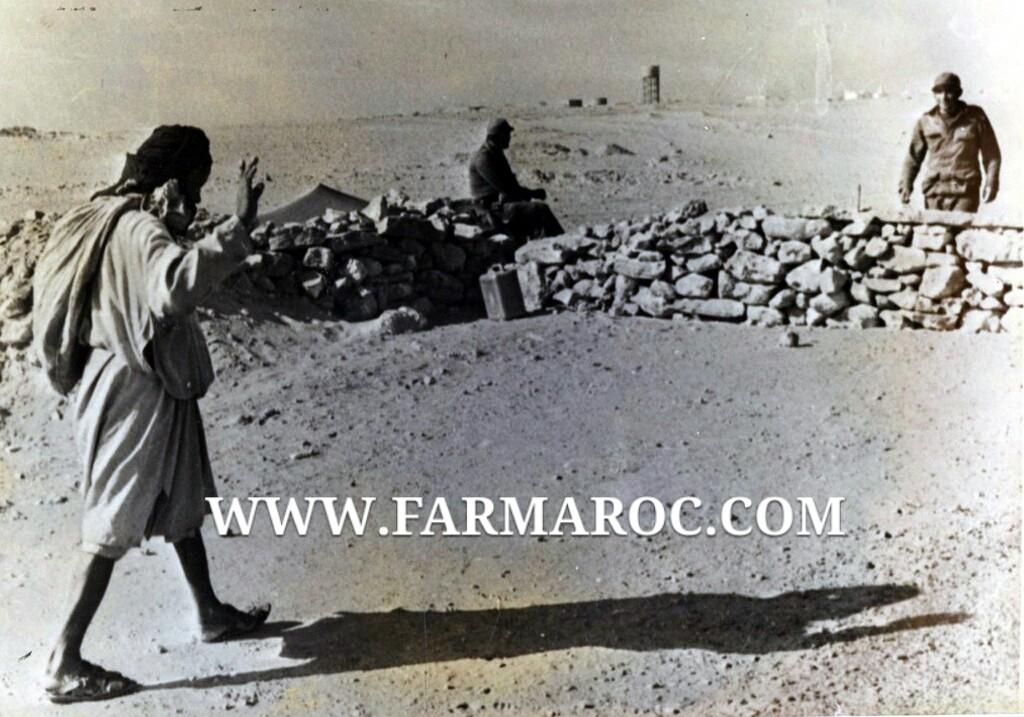 La Bataille d'Amgala 2015-012