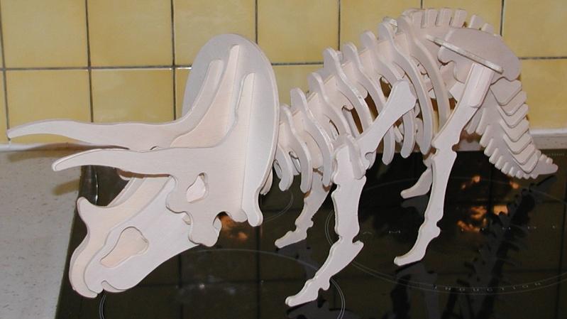Un dinosaure avec ma BZT P1010011