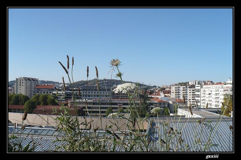 Le temps à Saint-Etienne au jour le jour (bis) - Page 3 21100719