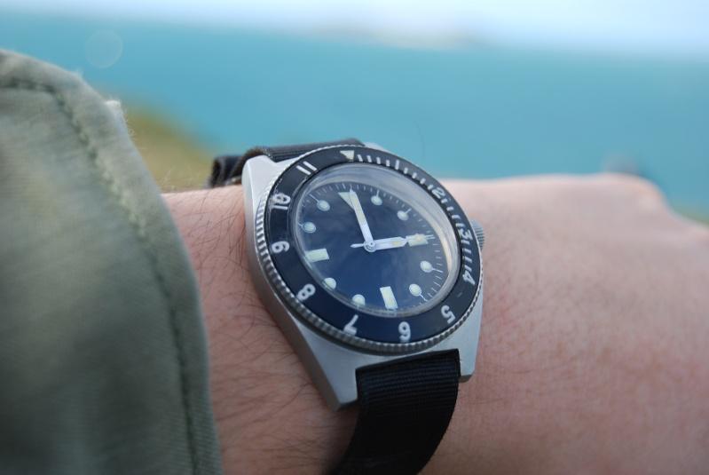 "Suite de ""operation in the Delta"" : Seals and Rolex Bebenr10"