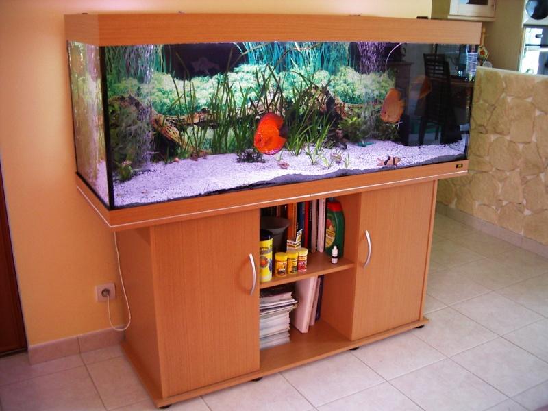 aquarium rio 400 litres juwel