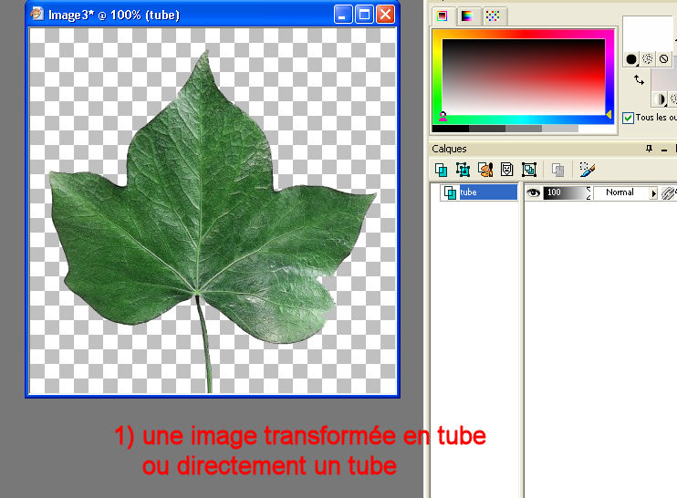 tuto 6 _ pinceaux ou brushes Image110