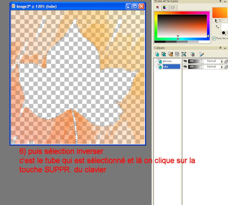 tuto 6 _ pinceaux ou brushes Image510