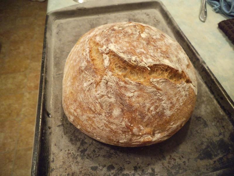 mon premier pain façon Ricardo  - Page 3 Dscf1238