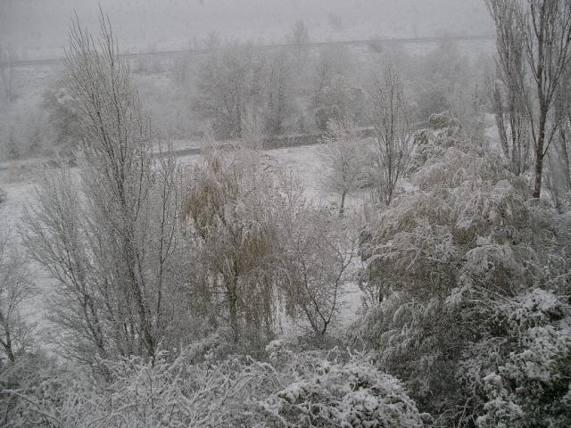 La neige en novembre ! Neige_15