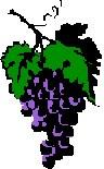 Le raisin ( les vendanges) 81001_12