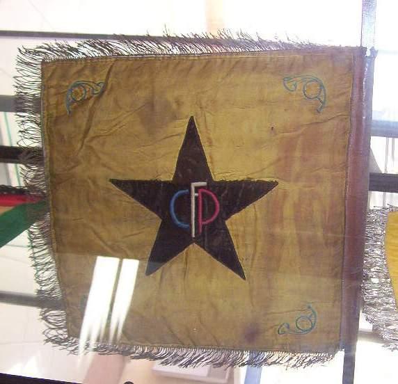 musée du CFP Corps Franc Pommiès 49ème RI Cfp310