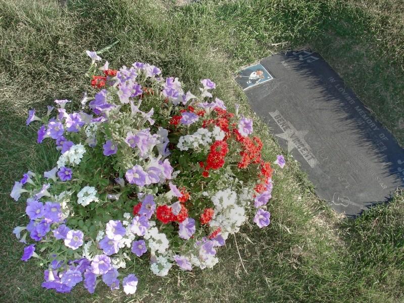 Eternal Valey - fleurs juillet 2007 Eterna13