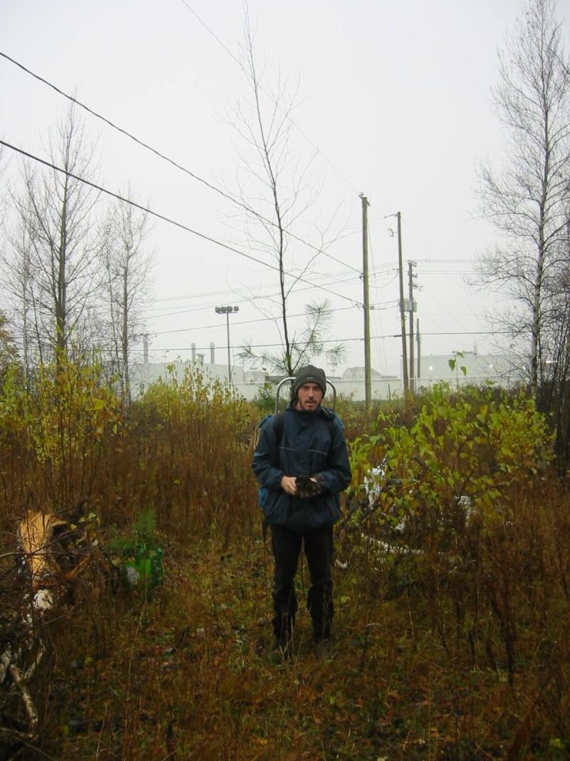 Le site de plantation 103-0310