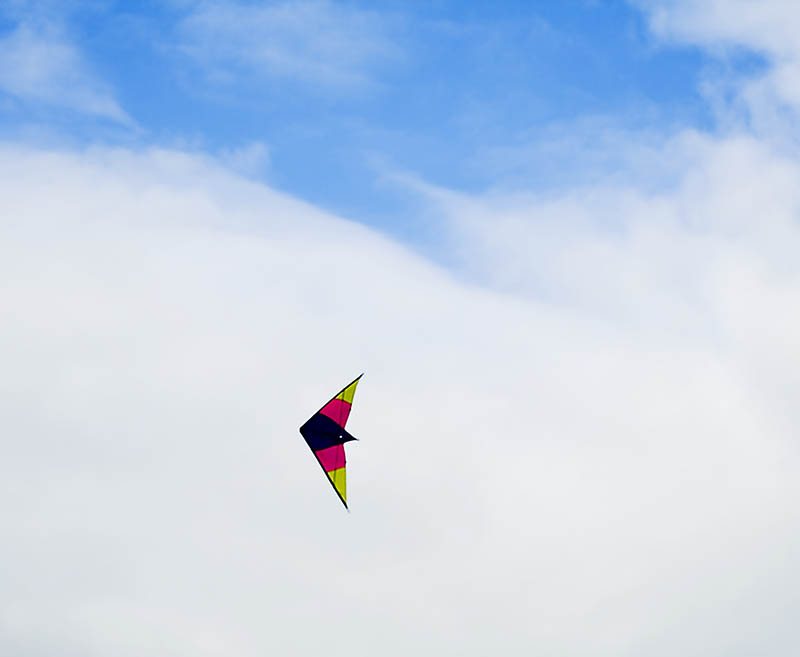 lets go fly a kite..... Lets_g10