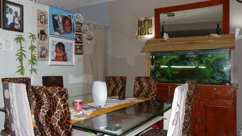 quel couleur irais dans mon sejour cuisine salle a manger ?pour les mur P1230525