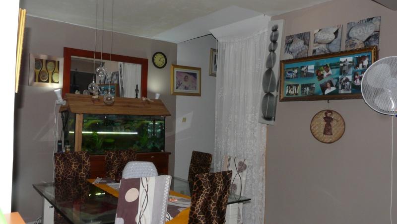 quel couleur irais dans mon sejour cuisine salle a manger ?pour les mur P1230529