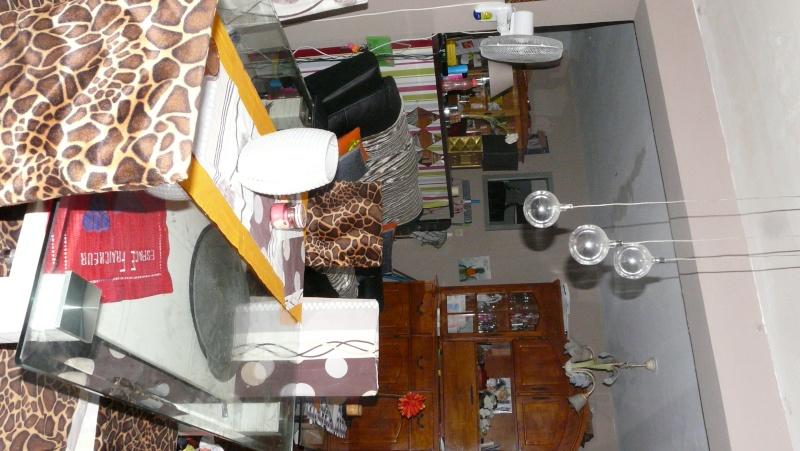 quel couleur irais dans mon sejour cuisine salle a manger ?pour les mur P1230530