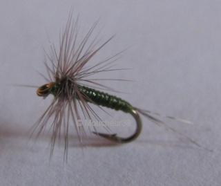 nymphe - Pêche en nymphe au toc Olive-11