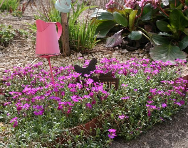le jardin d'agrément chez Princesse Img_1211
