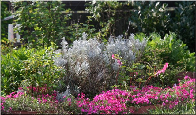 le jardin d'agrément chez Princesse Parter10