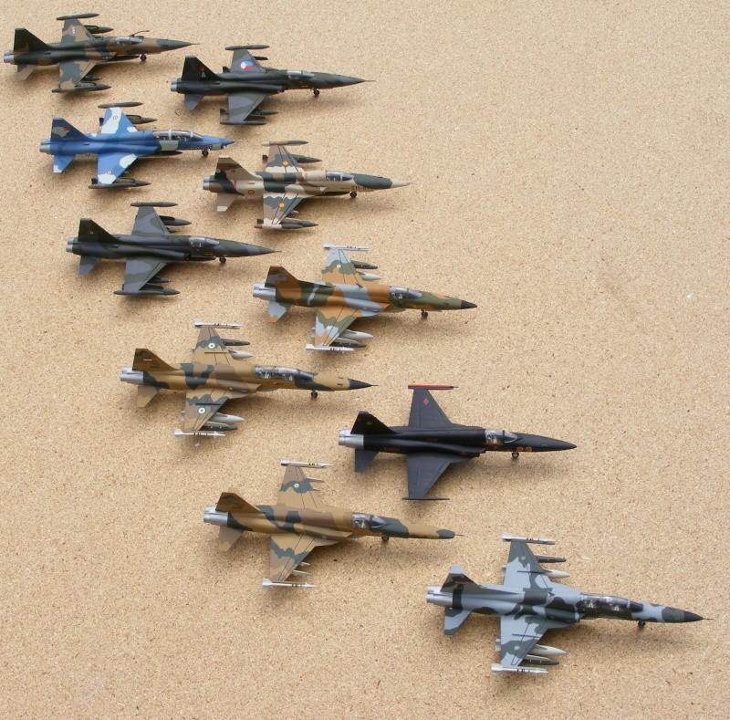 F-5A/CF-5A/RF-5A/NF-5A/F-5E/F-5F/RF-5E 2007_051
