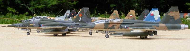 F-5A/CF-5A/RF-5A/NF-5A/F-5E/F-5F/RF-5E 2007_053