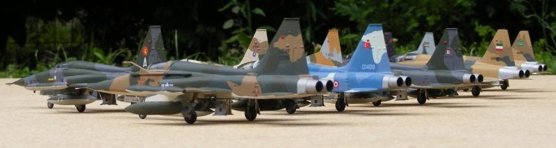F-5A/CF-5A/RF-5A/NF-5A/F-5E/F-5F/RF-5E 2007_054