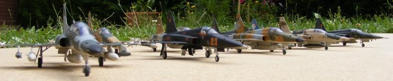 F-5A/CF-5A/RF-5A/NF-5A/F-5E/F-5F/RF-5E 2007_055