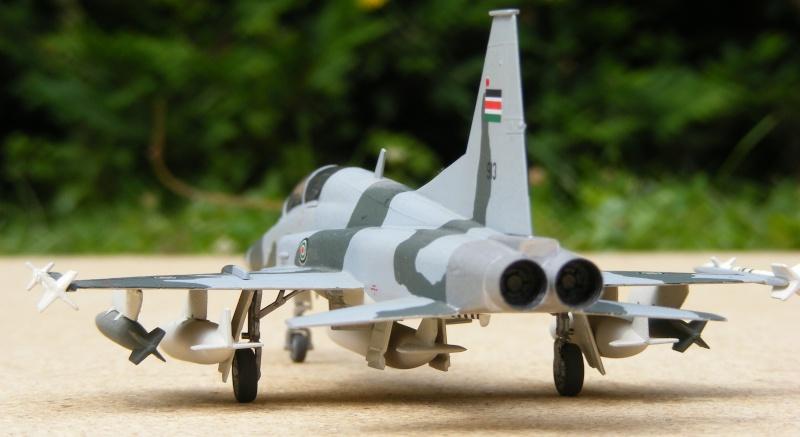 F-5A/CF-5A/RF-5A/NF-5A/F-5E/F-5F/RF-5E 2007_058