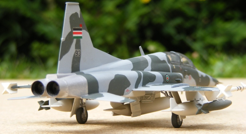 F-5A/CF-5A/RF-5A/NF-5A/F-5E/F-5F/RF-5E 2007_059