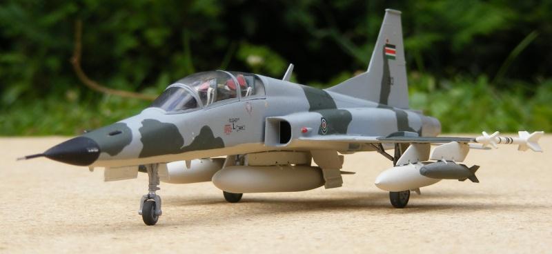 F-5A/CF-5A/RF-5A/NF-5A/F-5E/F-5F/RF-5E 2007_062