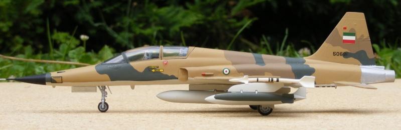 F-5A/CF-5A/RF-5A/NF-5A/F-5E/F-5F/RF-5E 2007_079