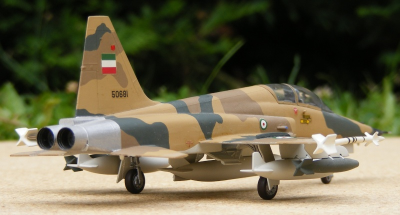 F-5A/CF-5A/RF-5A/NF-5A/F-5E/F-5F/RF-5E 2007_081