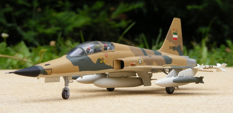 F-5A/CF-5A/RF-5A/NF-5A/F-5E/F-5F/RF-5E 2007_084