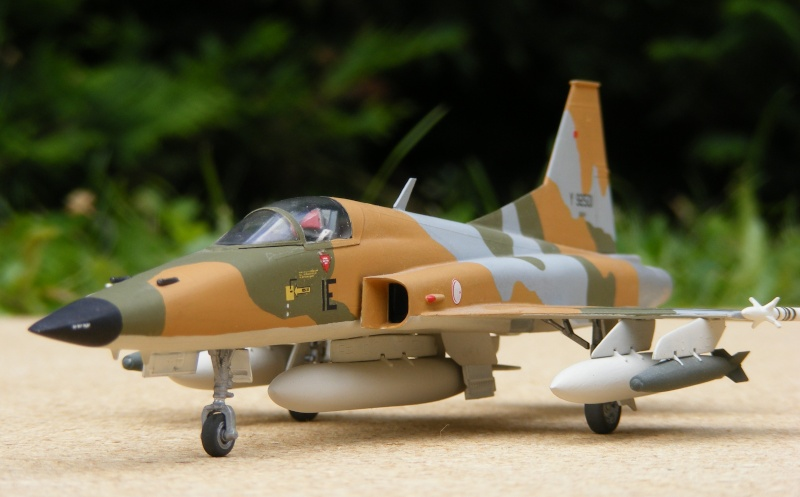 F-5A/CF-5A/RF-5A/NF-5A/F-5E/F-5F/RF-5E 2007_091