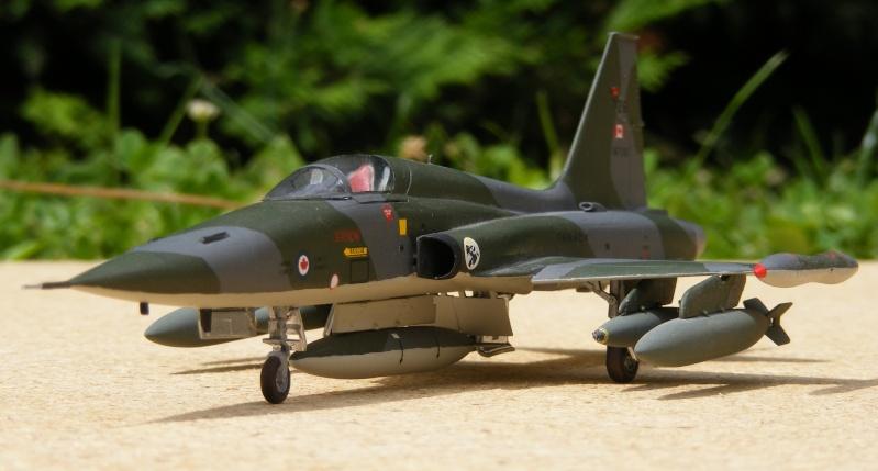 F-5A/CF-5A/RF-5A/NF-5A/F-5E/F-5F/RF-5E 2007_098