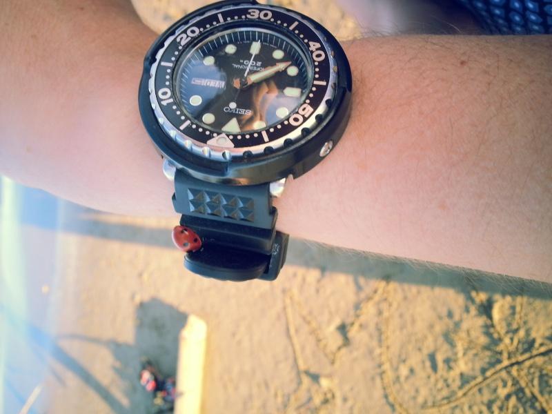 C'est beau le printemps.... (si si ça parle de montre...) Seikoc10