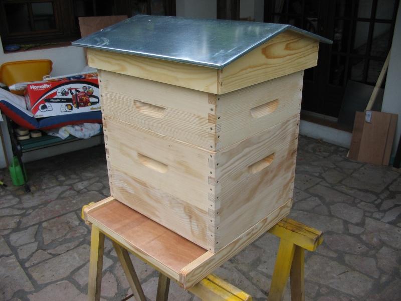 La diversité des abeilles & celle des fleurs sauvages dé Ruche_11