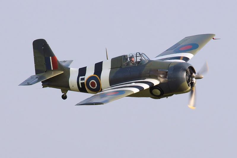 Wildcat at Duxford Img_6310