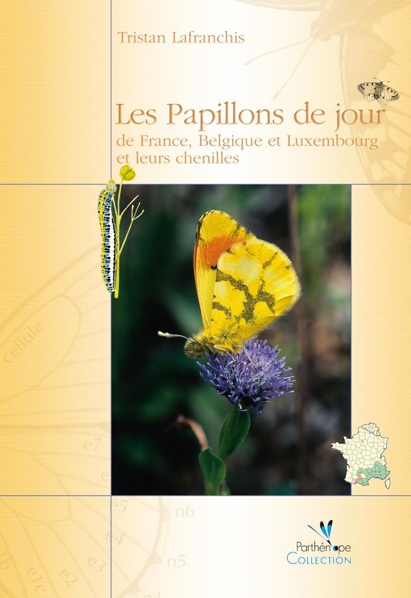 Les Papillons de jour de France, Belgique et Luxembourg Papill10