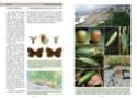 Nouvelle publication - La vie des papillons La_vie15