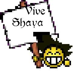 Lutte extrême avec Isshin - Page 2 Vive_s12