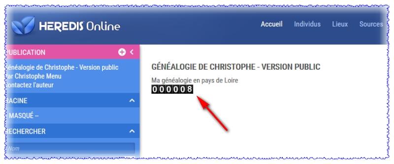 Comment mettre un compteur de visites sur votre site Heredis Online ? 146