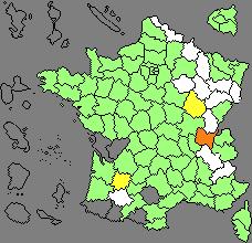 Plantain ? France10