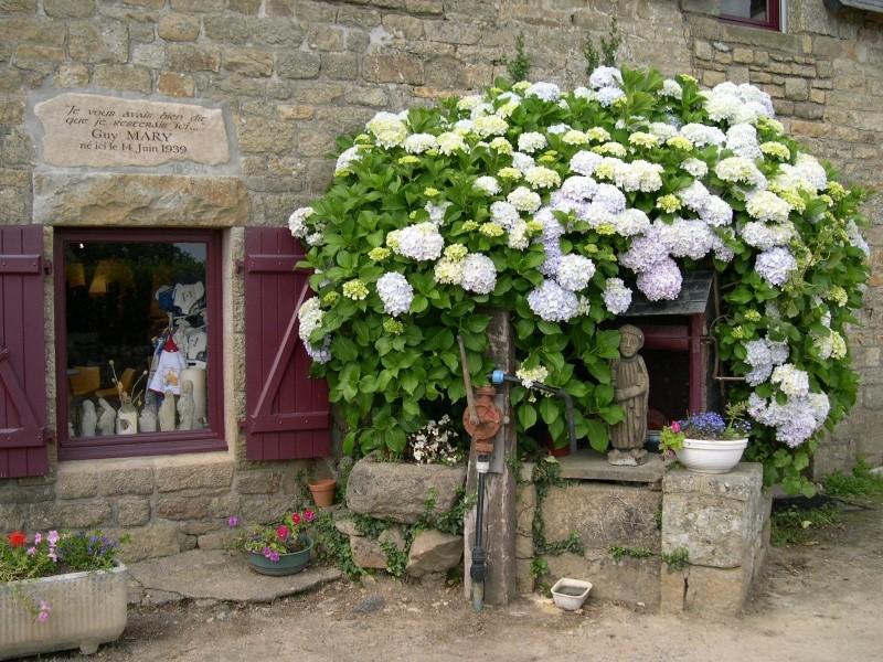 la Petite Métairie Kermario Carnac Dscn6413