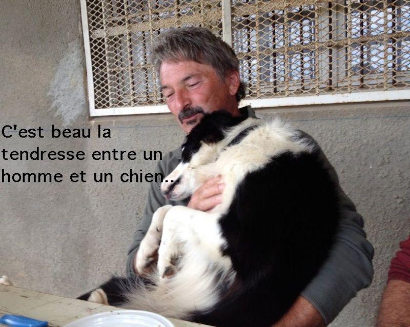border - Mon border est un obsédé sexuel!!!!!!!!! Captur11